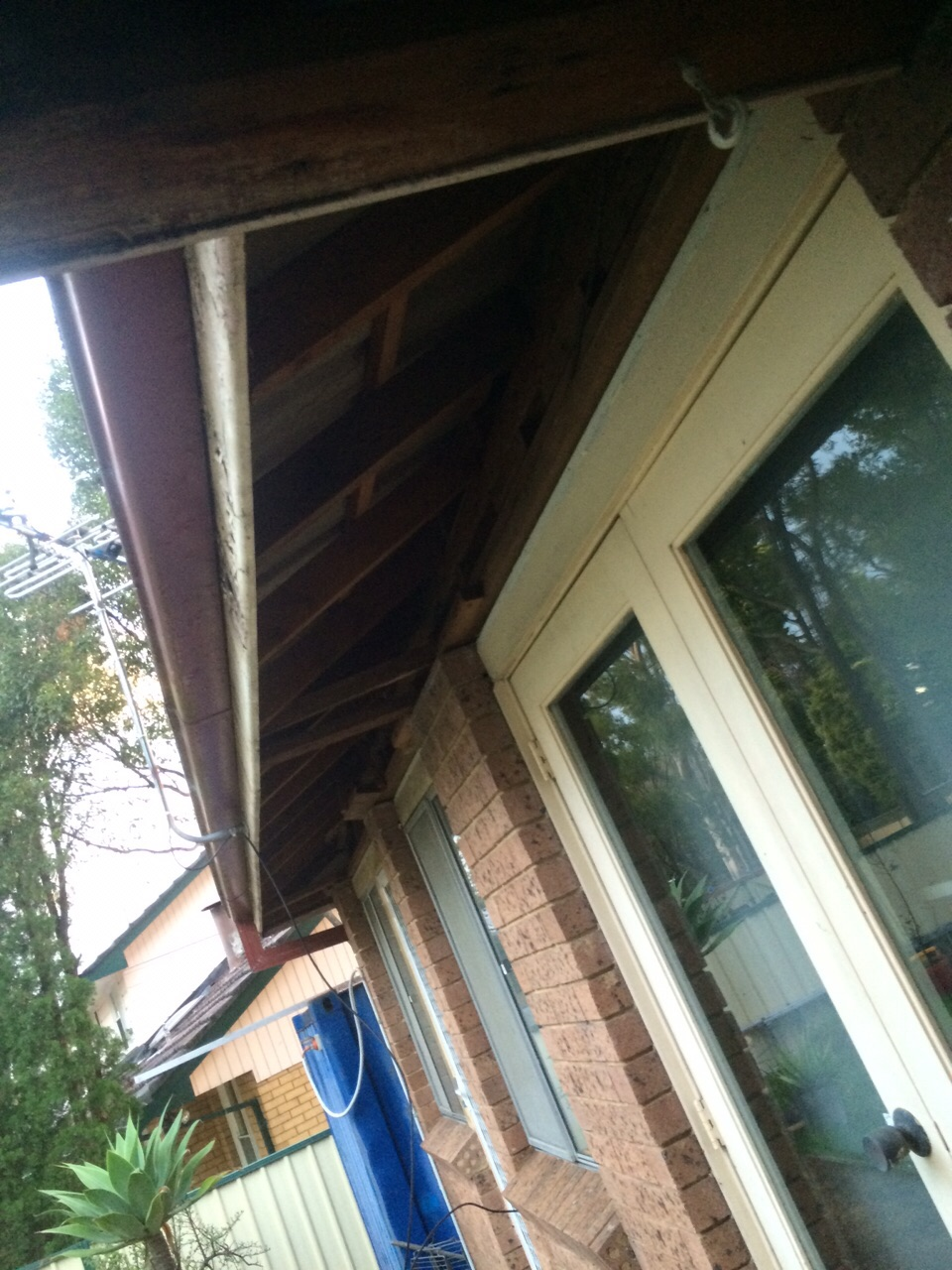 Asbestos Eaves And Ceilings 1st Choice Asbestos Removal